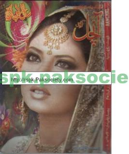 Aanchal digest january 2011 download pdf book